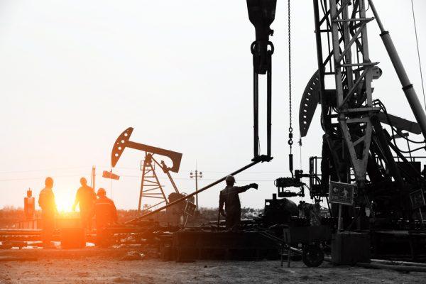 ارتفاع النفط التصحيحي